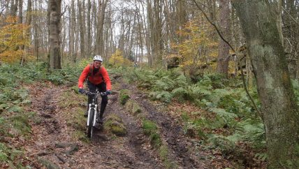 Mountain biker riding downhill through the woods