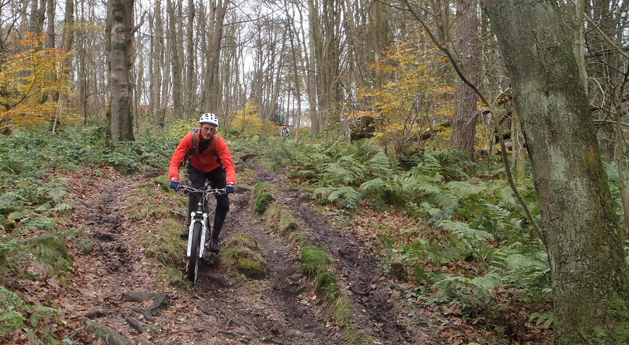 Mountain Biking Intermediate course private booking